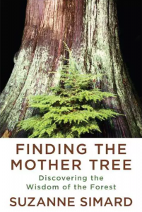 Finding the Mother Tree by Susanne Simard